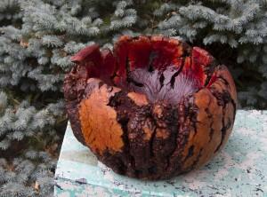 Manzanita Burl Massive Bowl