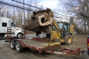 Loading a massive maple burl, storm fall recovery.