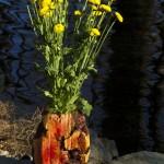 Manzanita Burl Vase